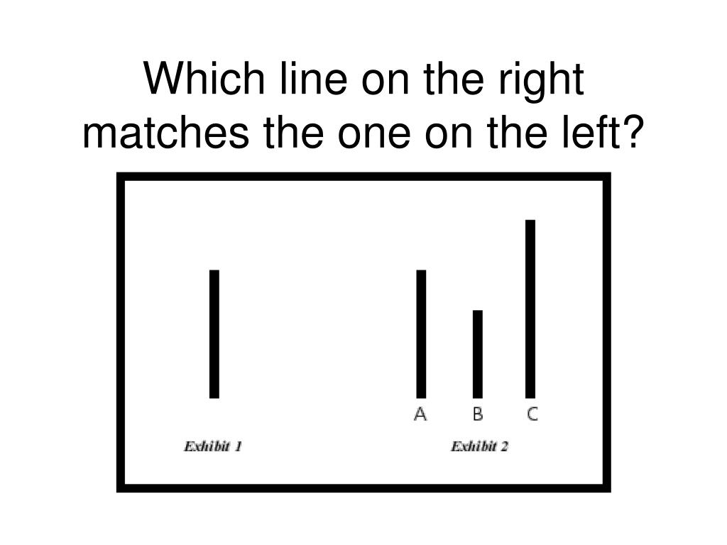 Which line on the right matches the one on the left?