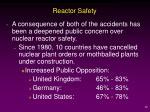 reactor safety20