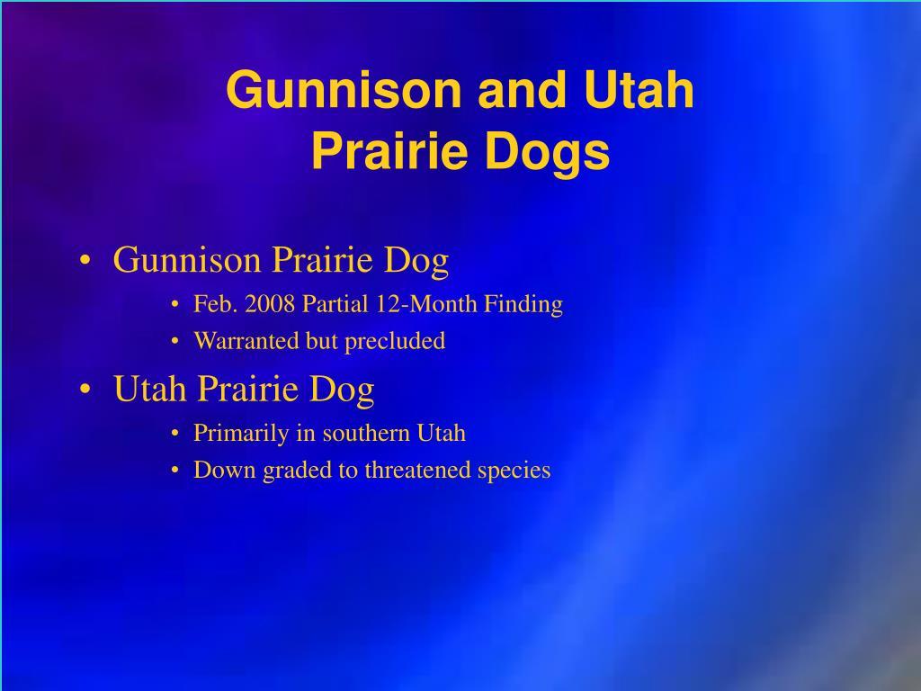 Gunnison and Utah