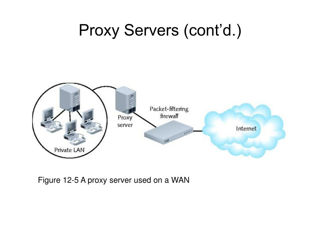 Figure 12-5 A proxy server used on a WAN