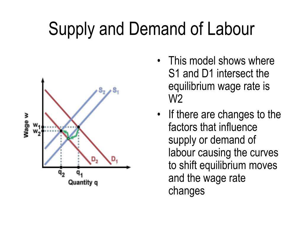 Supply and Demand of Labour