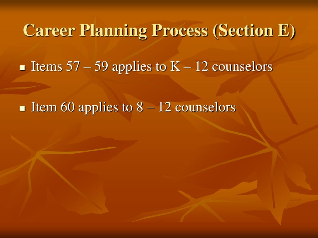Career Planning Process (Section E)