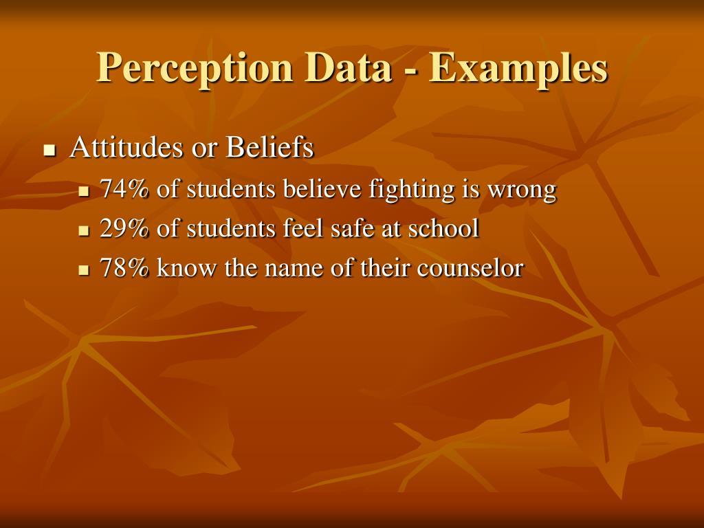 Perception Data - Examples