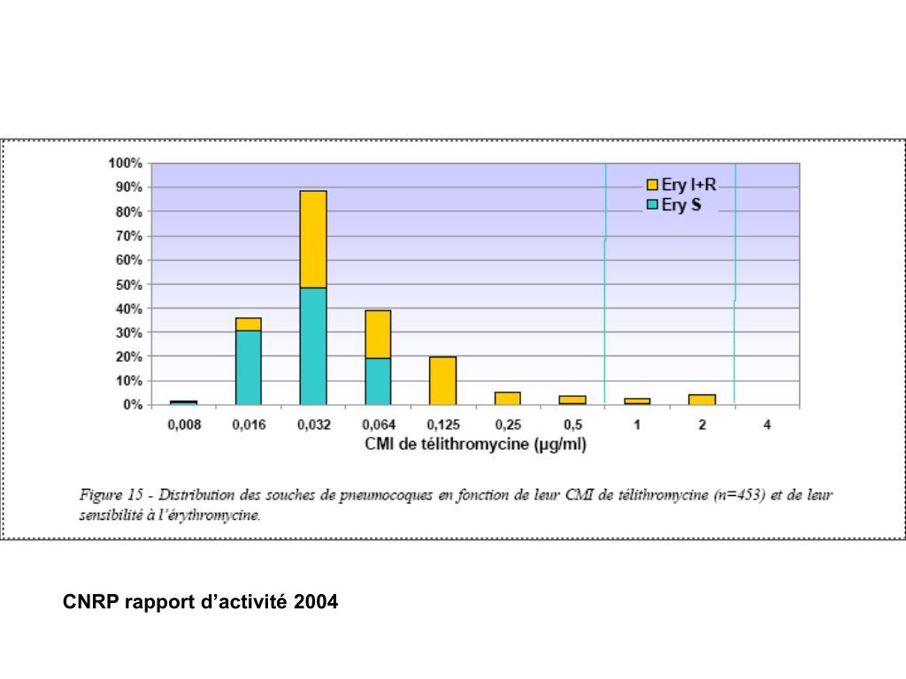 CNRP rapport d'activité 2004