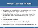 animal carcass waste