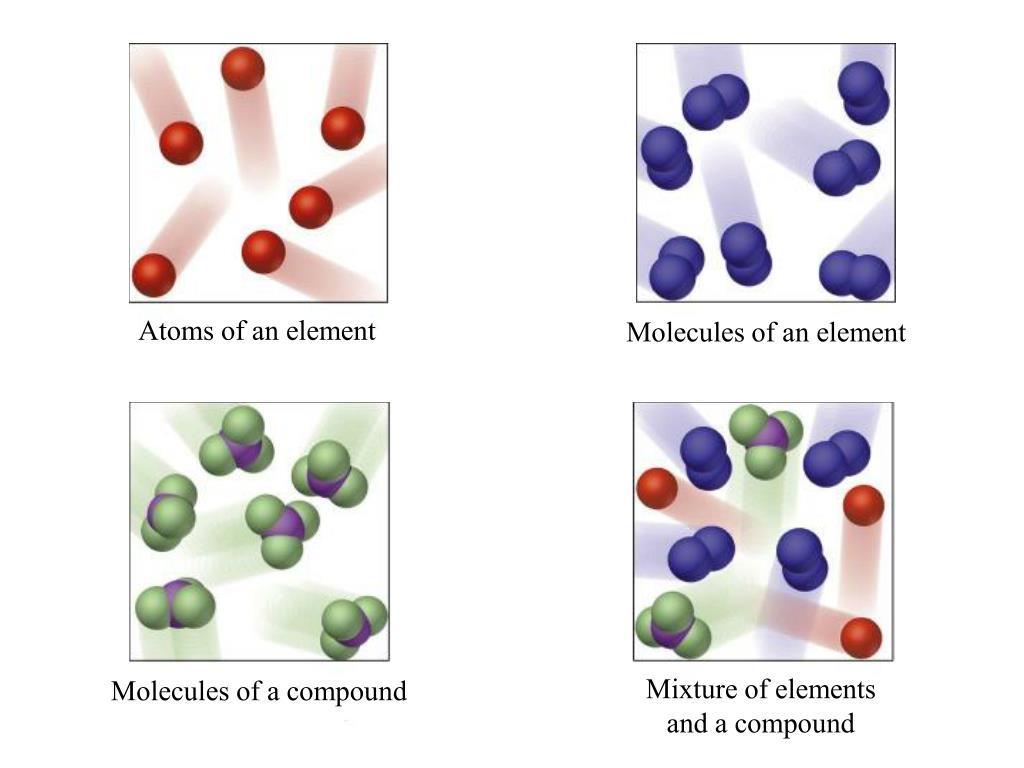 Atoms of an element
