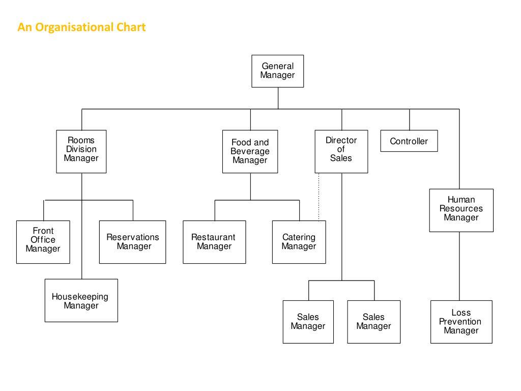 An Organisational Chart