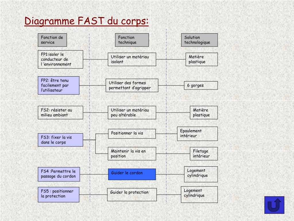 Diagramme FAST du corps: