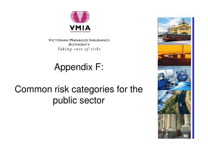 Appendix f common risk categories for the public sector