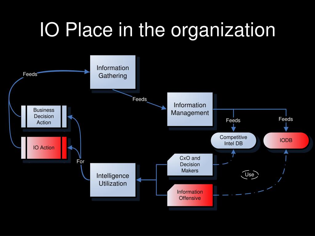 IO Place in the organization