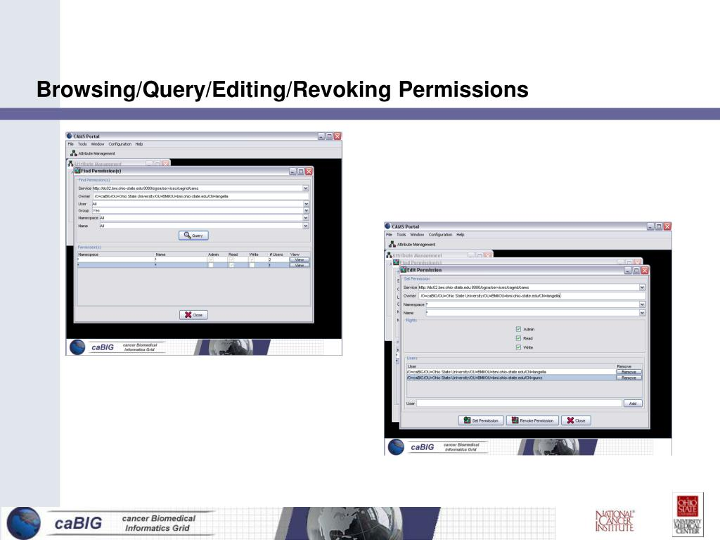 Browsing/Query/Editing/Revoking Permissions
