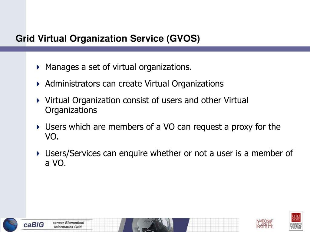 Grid Virtual Organization Service (GVOS)