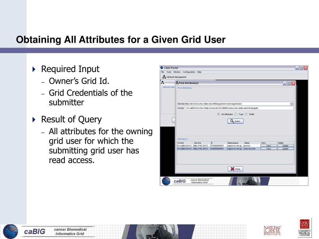 Obtaining All Attributes for a Given Grid User