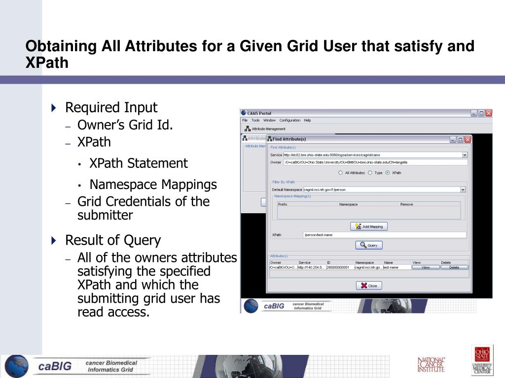 Obtaining All Attributes for a Given Grid User that satisfy and XPath