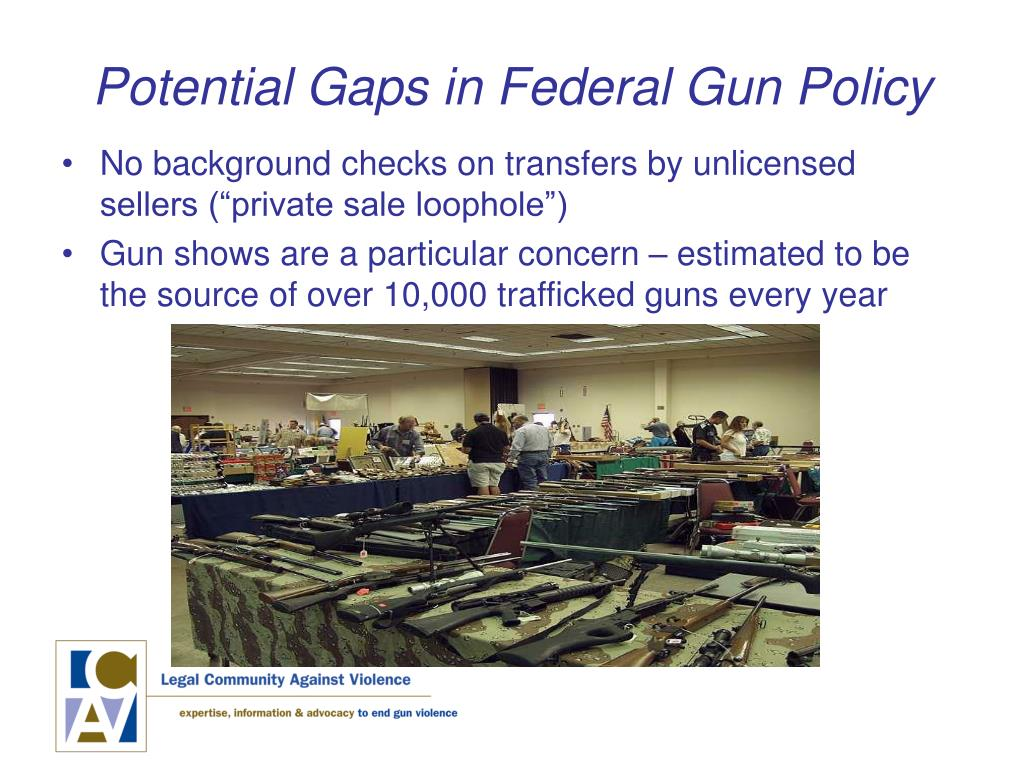 Potential Gaps in Federal Gun Policy
