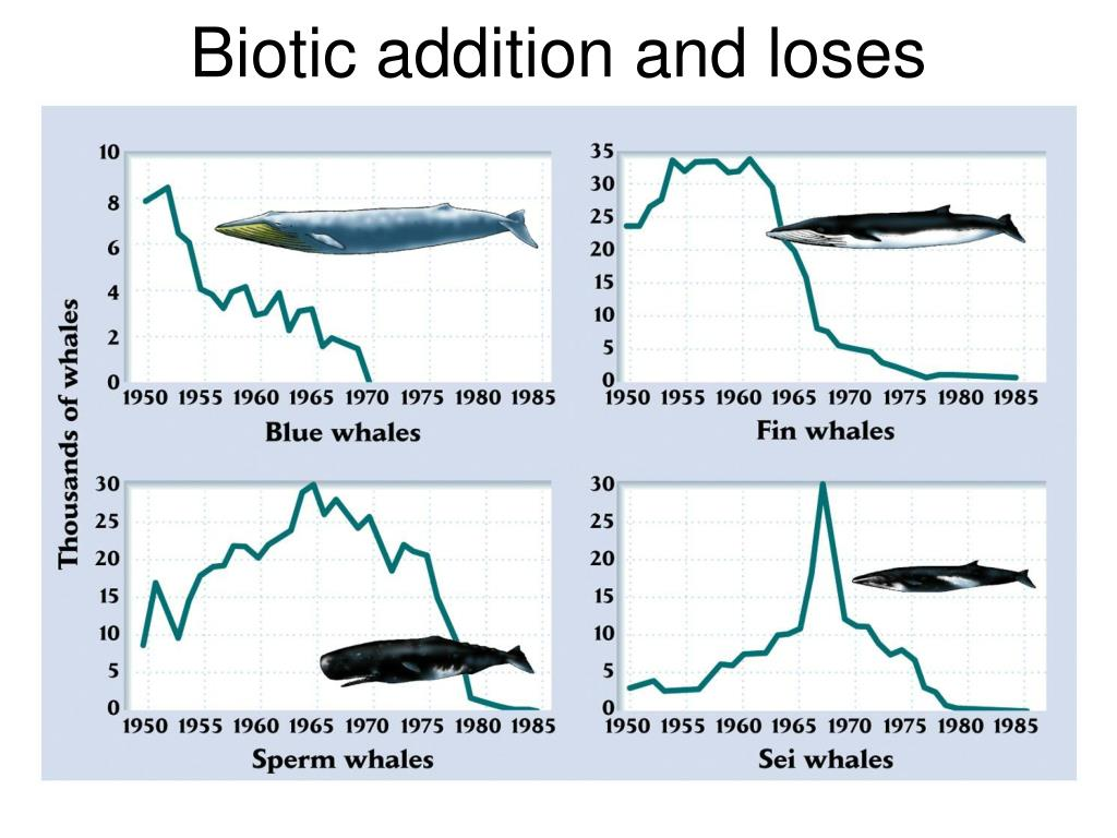 Biotic addition and loses