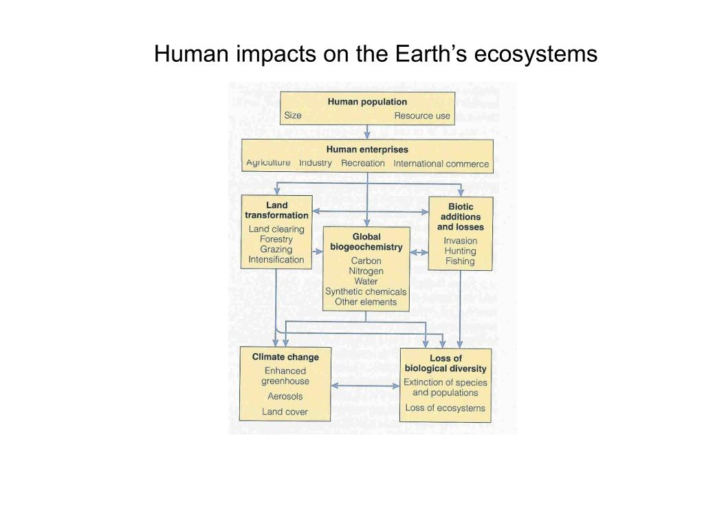 Human impacts on the Earth's ecosystems