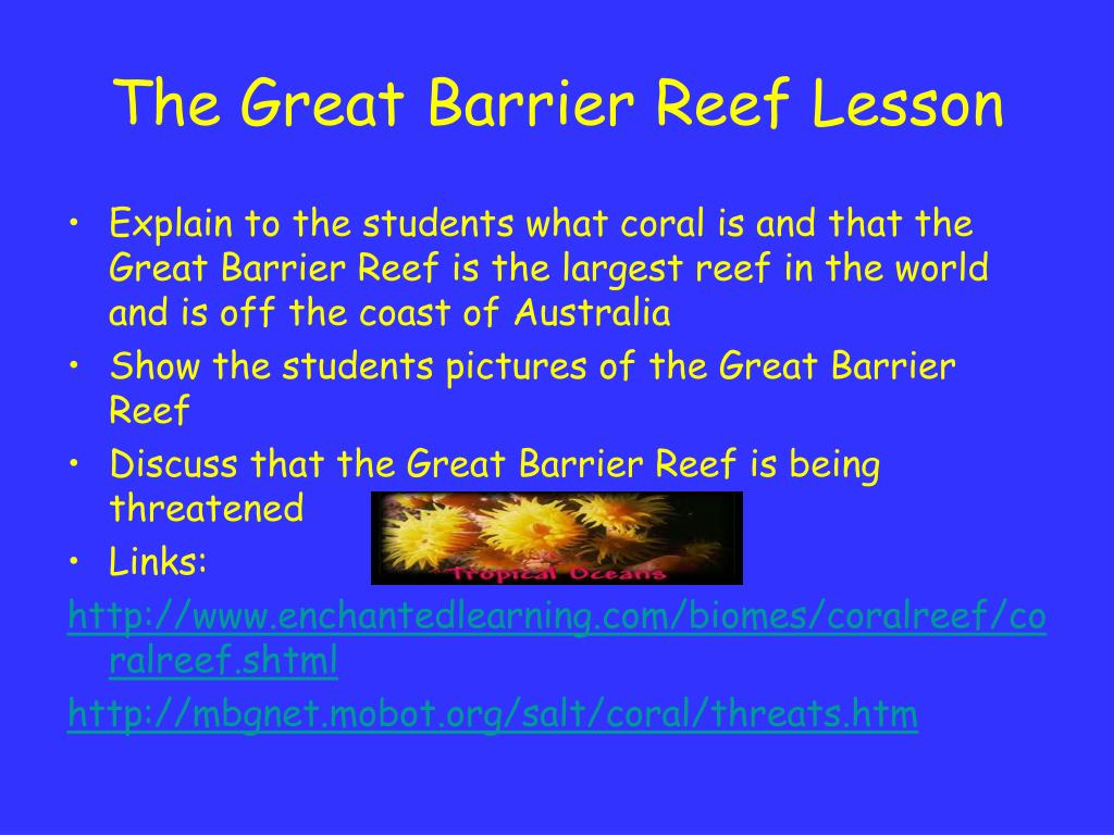 The Great Barrier Reef Lesson