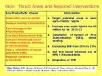 rice thrust areas and required interventions