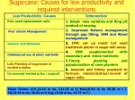 sugarcane causes for low productivity and required interventions