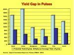 yield gap in pulses