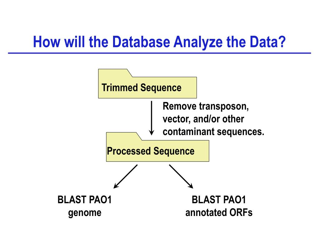 Processed Sequence