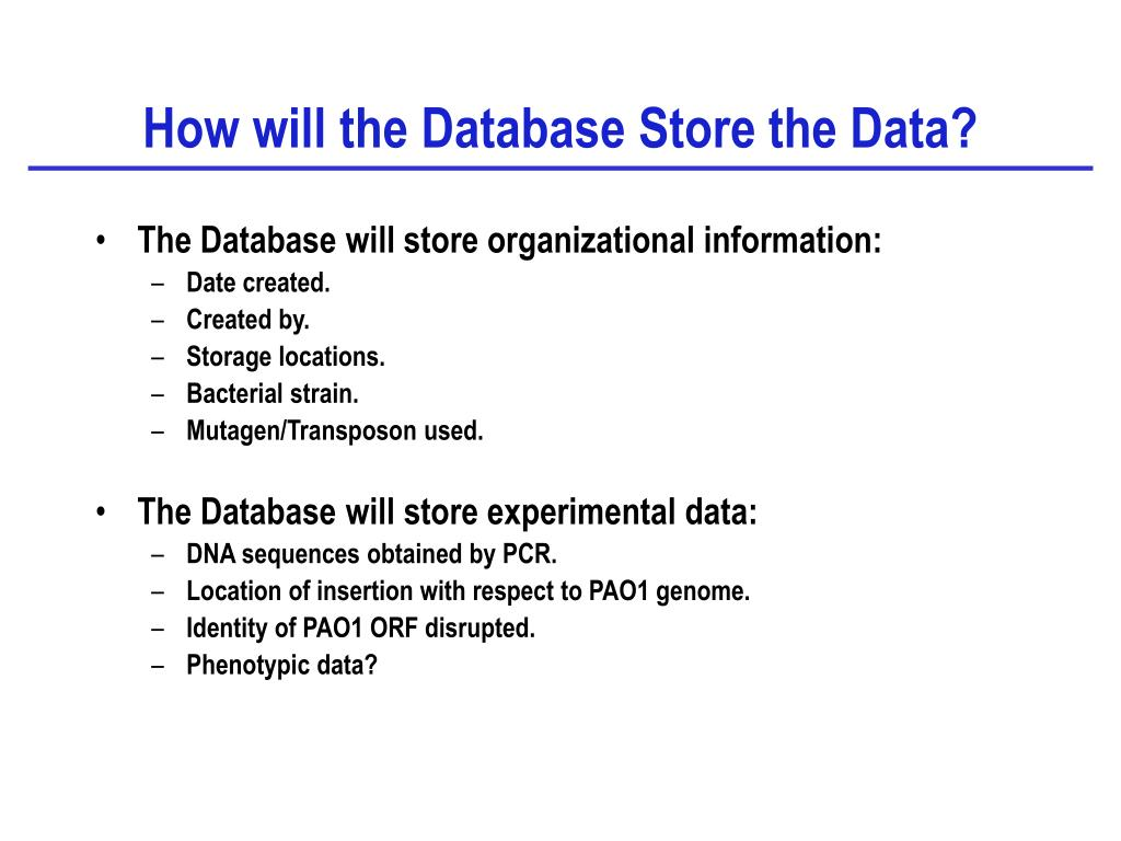 How will the Database Store the Data?