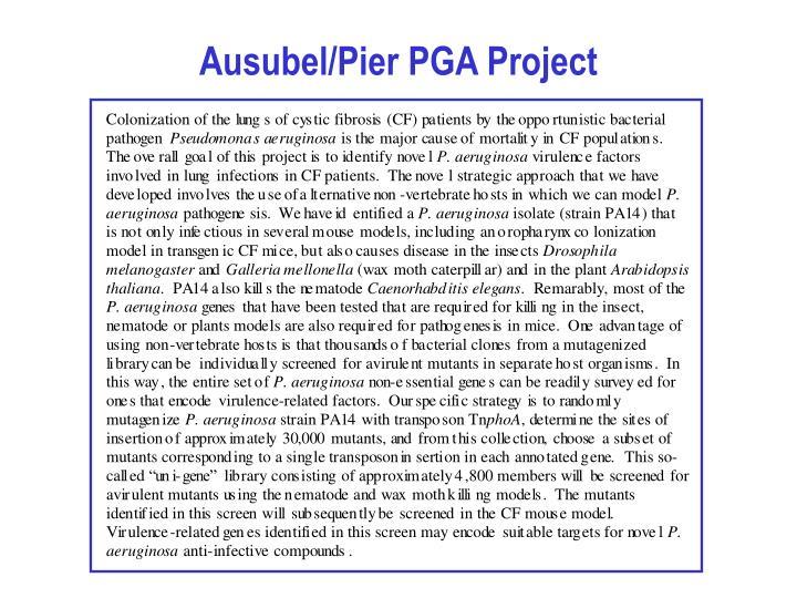 Ausubel/Pier PGA Project
