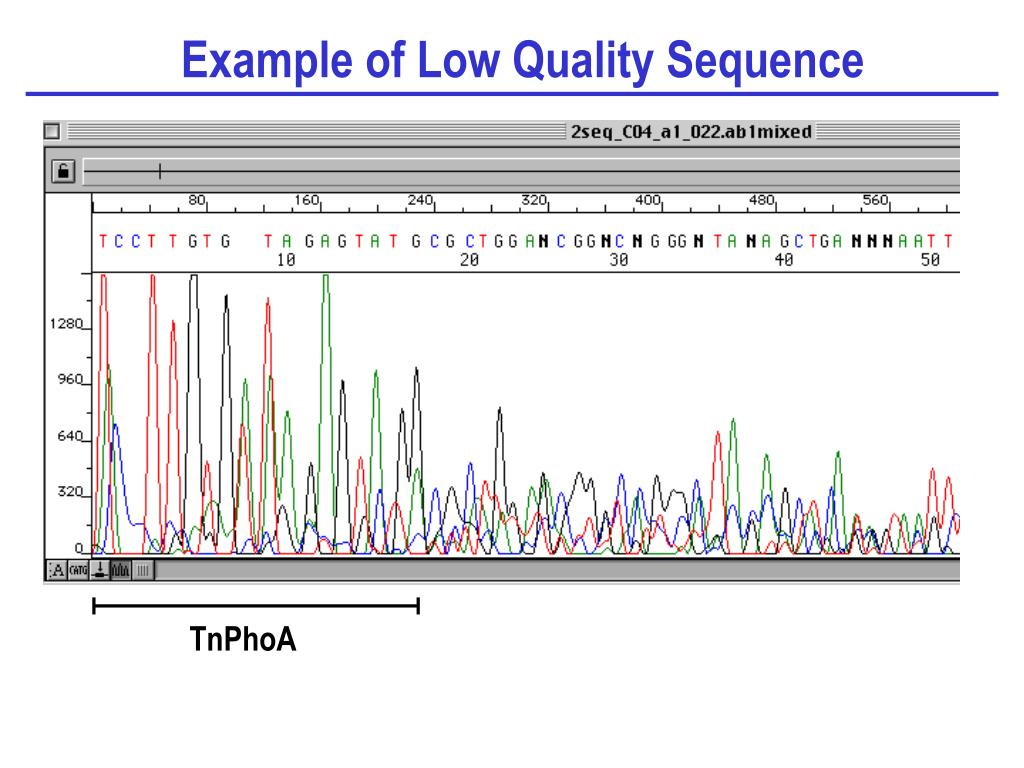 Example of Low Quality Sequence