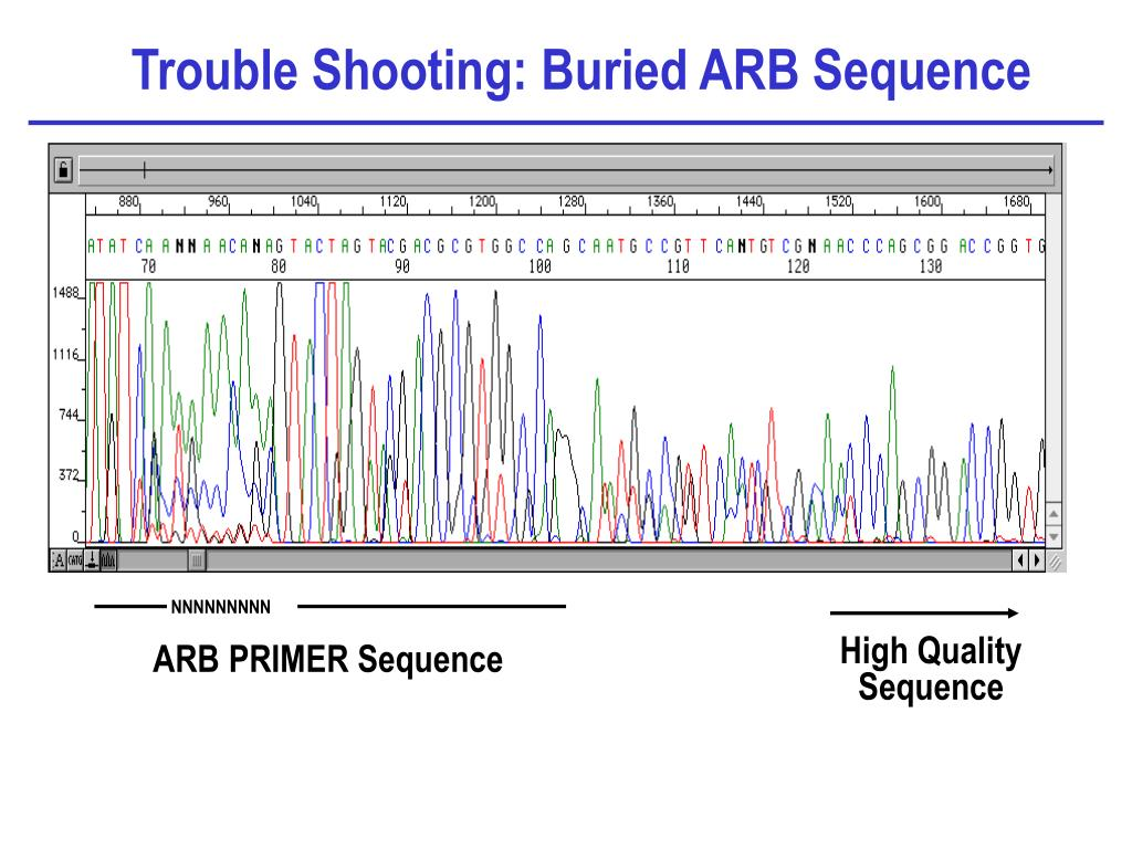 Trouble Shooting: Buried ARB Sequence