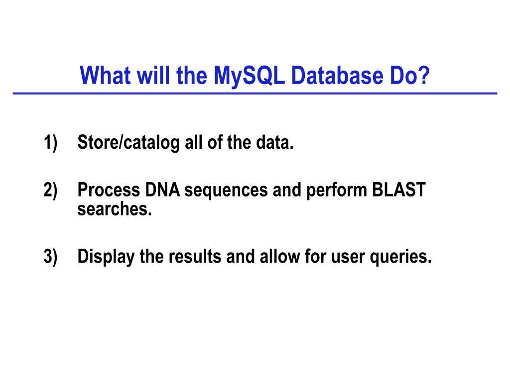 What will the MySQL Database Do?