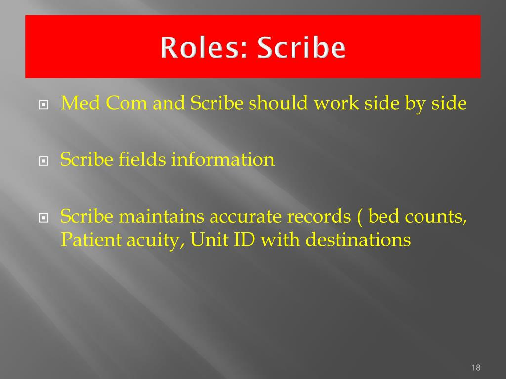 Roles: Scribe