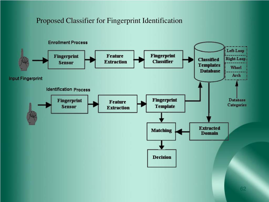 Proposed Classifier for Fingerprint Identification