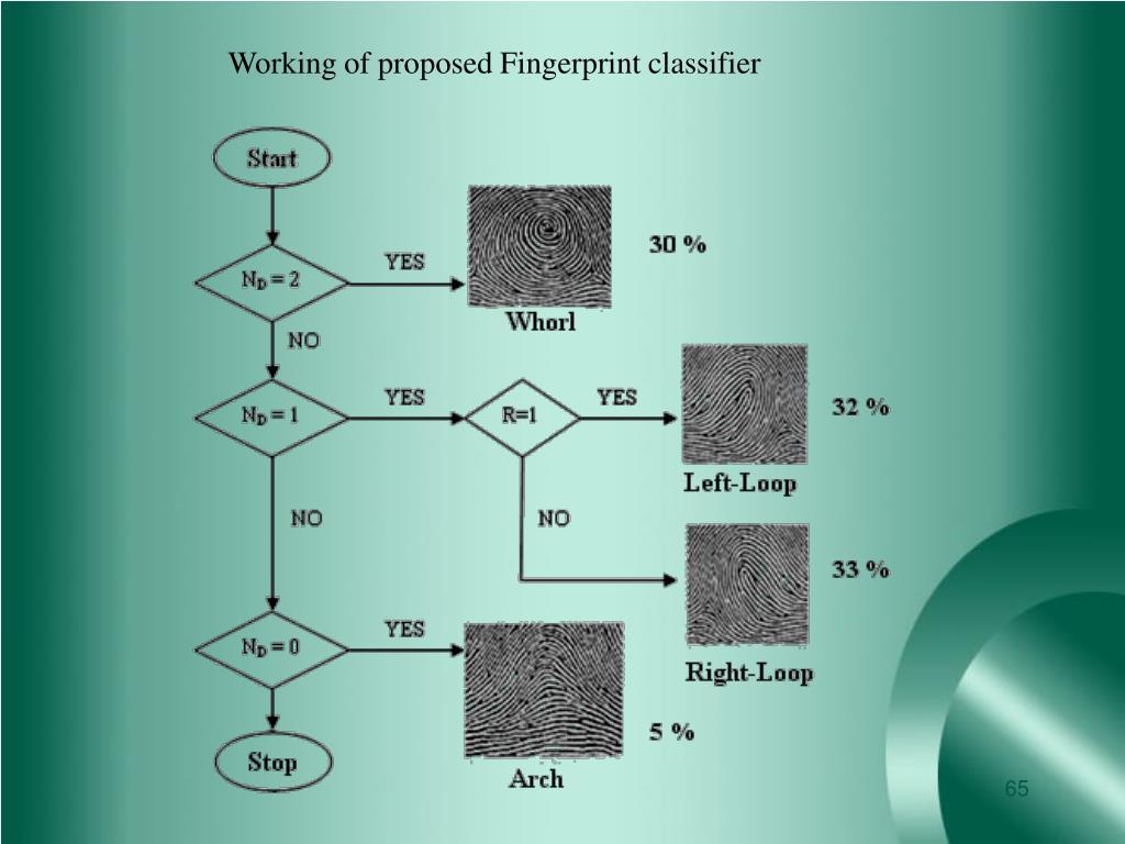 Working of proposed Fingerprint classifier