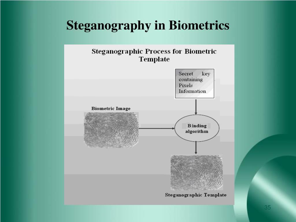 Steganography in Biometrics