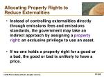 allocating property rights to reduce externalities