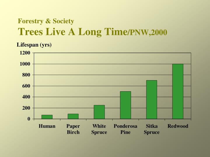Forestry society trees live a long time pnw 2000