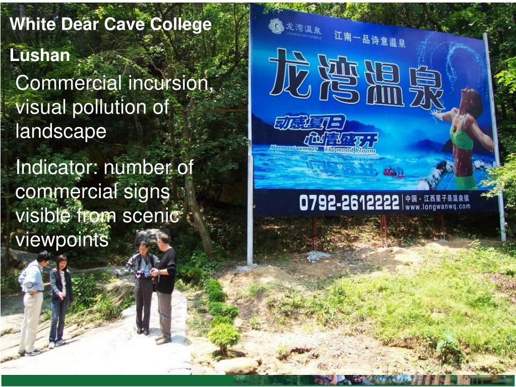 White Dear Cave College