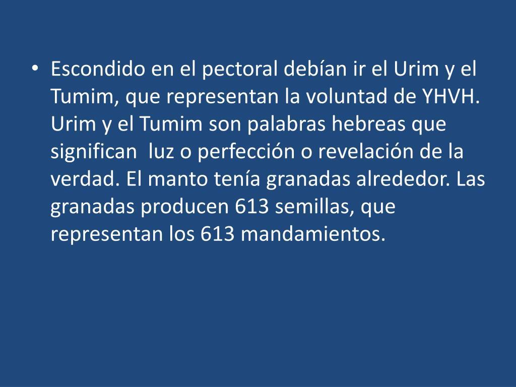 Escondido en el pectoral debían ir el Urim y el Tumim, que representan la voluntad de YHVH.