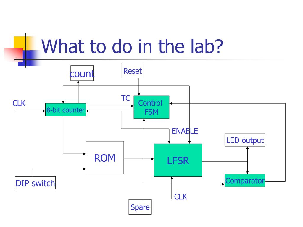 What to do in the lab?