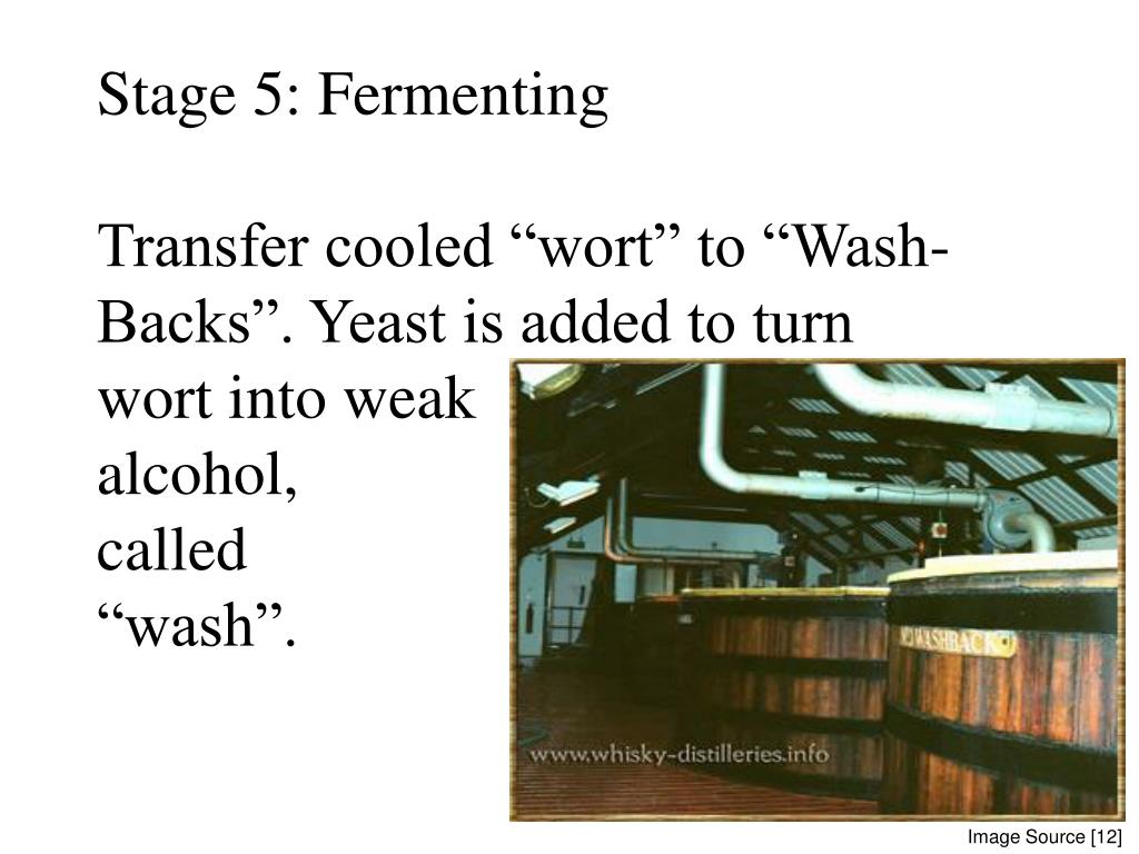 Stage 5: Fermenting