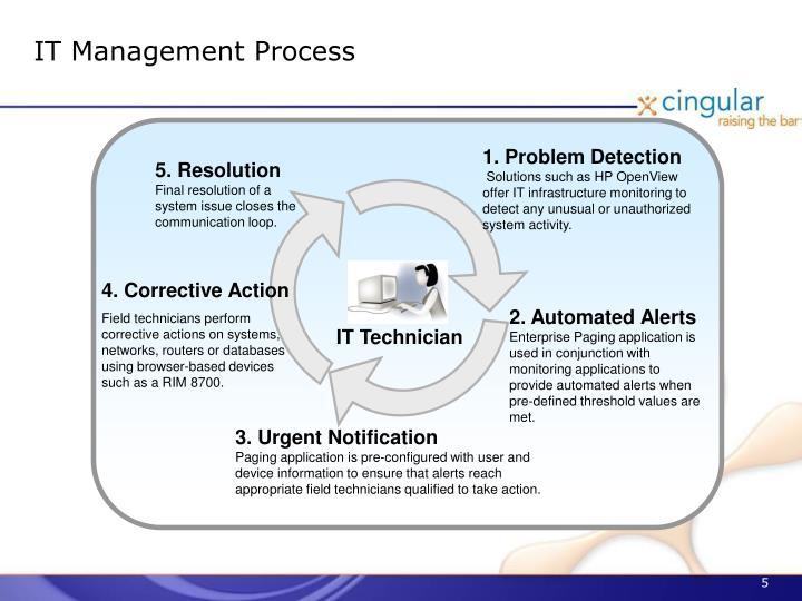 IT Management Process