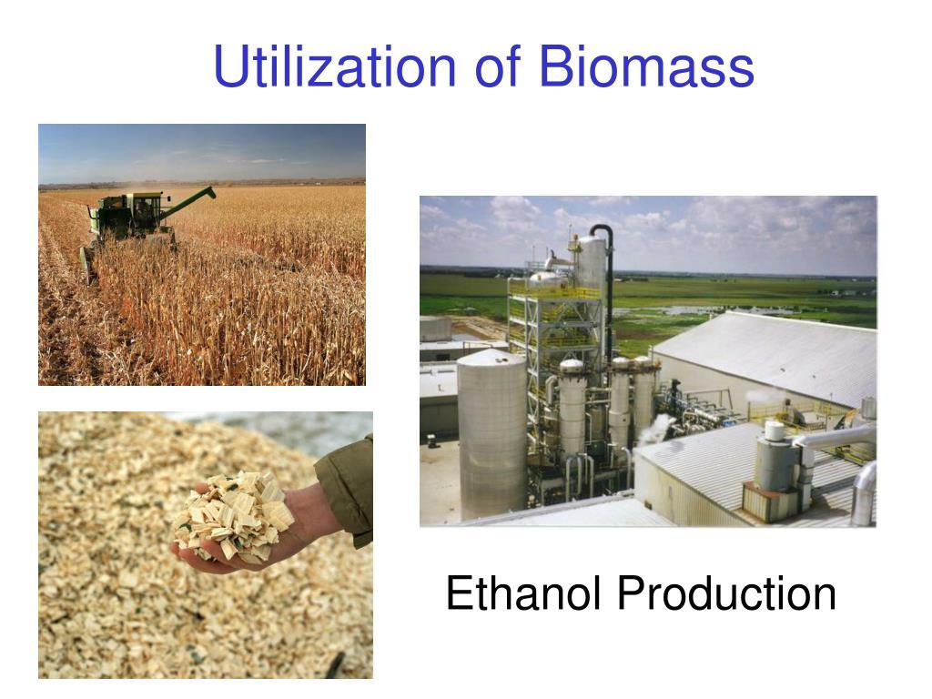 Utilization of Biomass