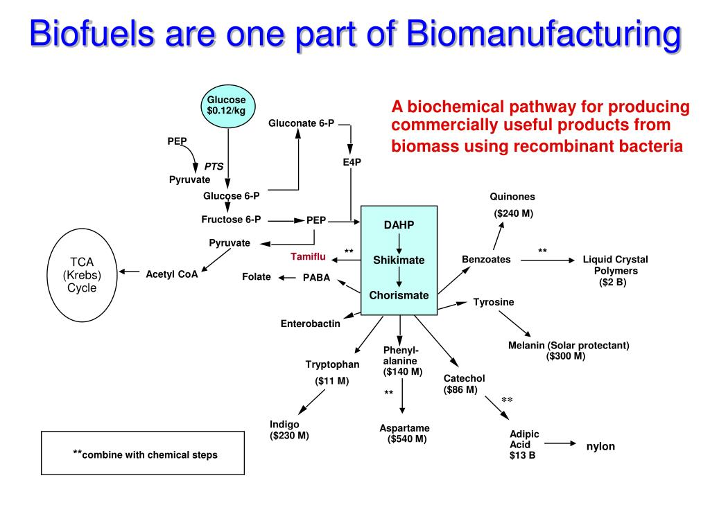 Biofuels are one part of Biomanufacturing