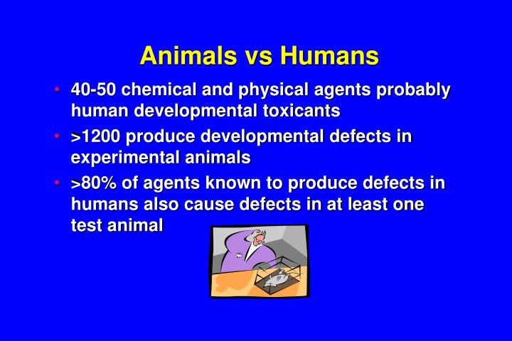 Animals vs Humans