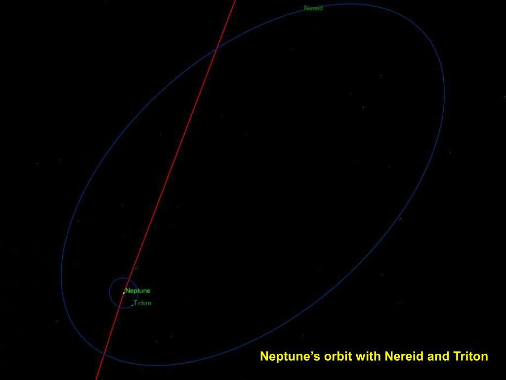 Neptune's orbit with Nereid and Triton