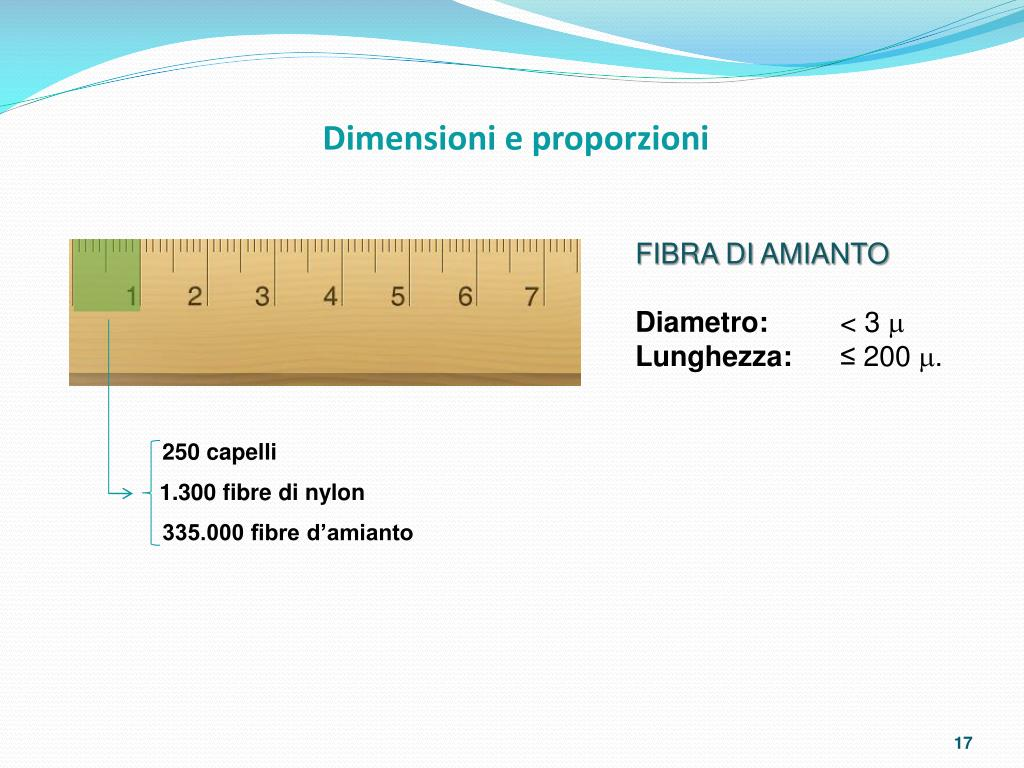 Dimensioni e proporzioni