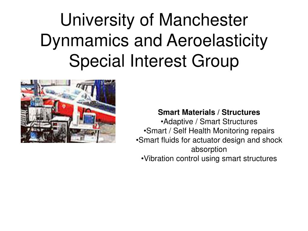 University of Manchester Dynmamics and Aeroelasticity Special Interest Group