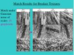match results for brodatz textures