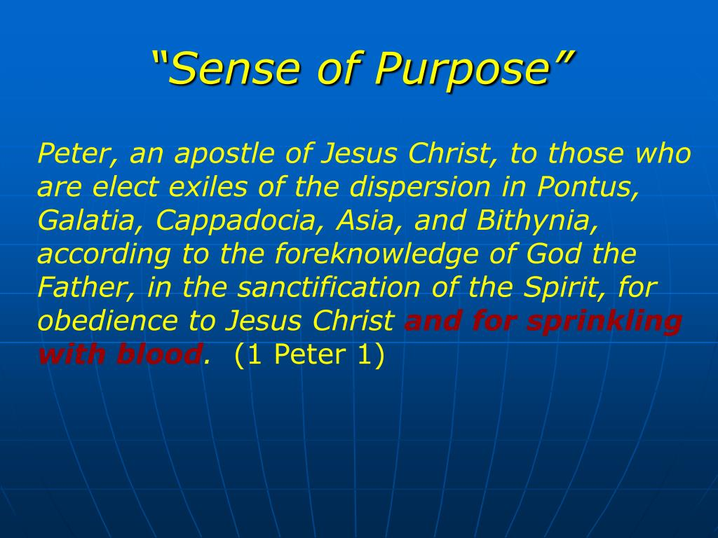 """Sense of Purpose"""